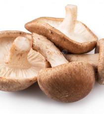 products_2181395-shiitake-mushrooms-white-background-114723048.jpg