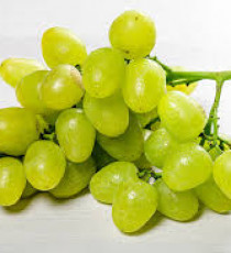 products_3460751-greengrape.jpg