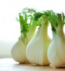 products_5745351-fennel.jpg