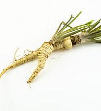 products_8615675-horseradish.jpg