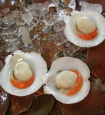products_9754337-shellfish-123201296701883rD8.jpg