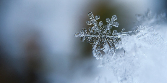 categories_7450128-ice.jpg
